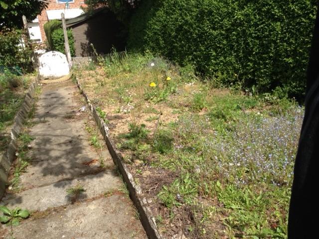 jardin en friche à preter